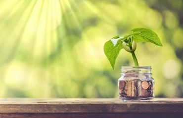 Plant sprouting out of a jar of money.